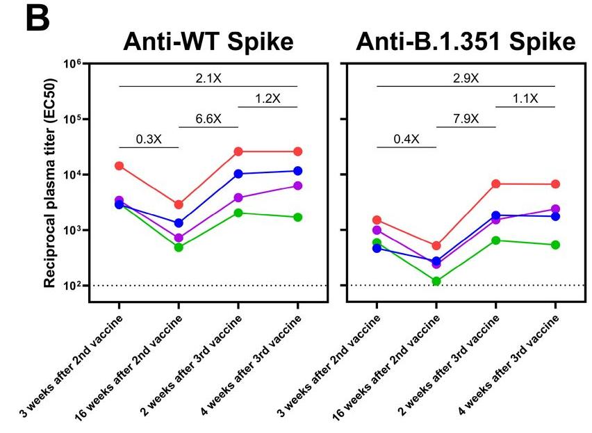 2回目・3回目ワクチン接種後の、非変異型とベータ型に対する抗体価の推移