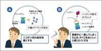 tabako_01.jpg